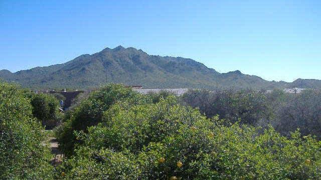 Photo 1 of 6 - 26514 S Recker Rd, AZ 85242