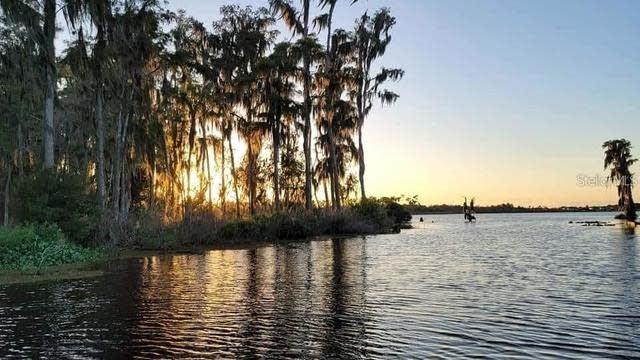 Photo 1 of 37 - 14192 Bridgewater Crossings Blvd, Windermere, FL 34786
